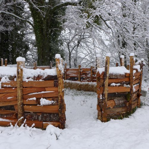 Canapé forestier à Aubonne