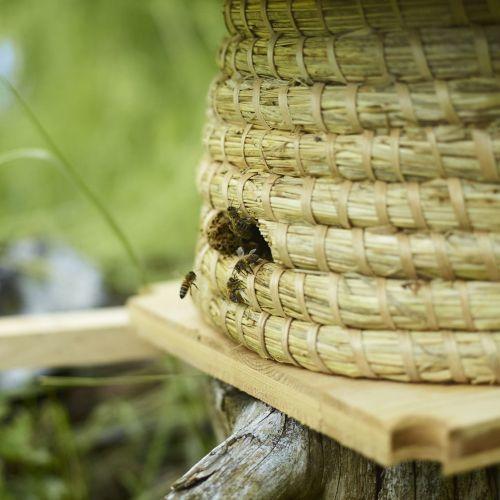La ruche panier