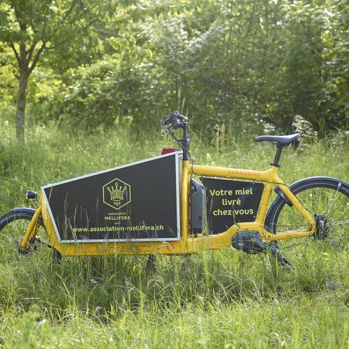 A vélo, tout est plus beau!